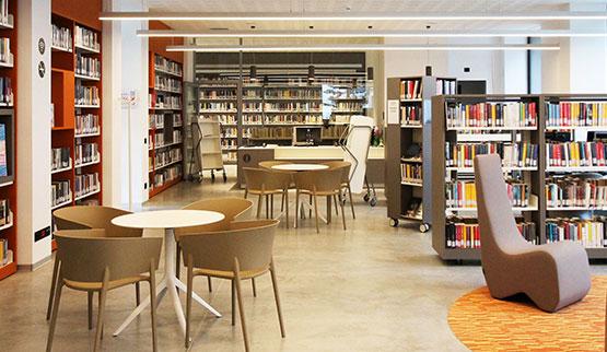 settori-biblioteche-archivi